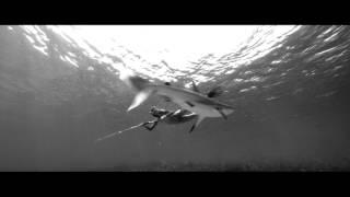 Nonton Live Cargo / Živý náklad Film Subtitle Indonesia Streaming Movie Download