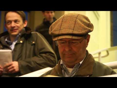 Tattersalls Autumn Horses in Training Sale 2015 Day 1