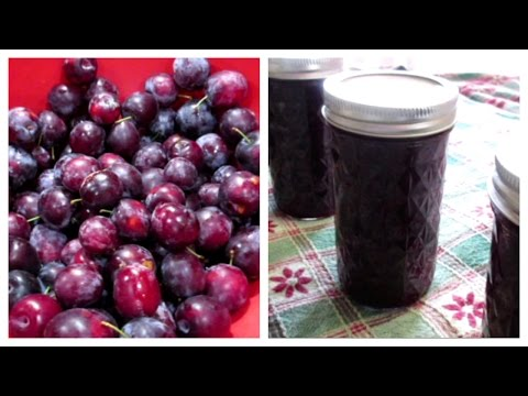 How to make Plum Jam ~ Easy & Yummy!
