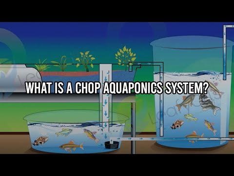 What is a CHOP Aquaponics System?