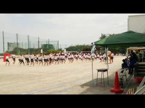 【2016/5/14】川崎市立枡形中学校体育祭 赤ブロック3分応援