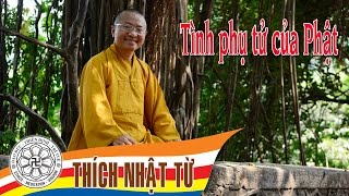 Tình phụ tử của Phật - TT. Thích Nhật Từ - 19/06/2005