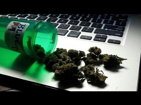 High Finance: Cannabis Expo, Microsoft & New York Hemp Legislation