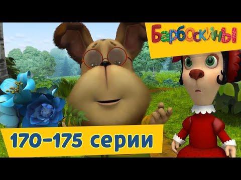 Барбоскины - Новые серии🚜 170-175 подряд 🚂 без остановки!🚀 (видео)