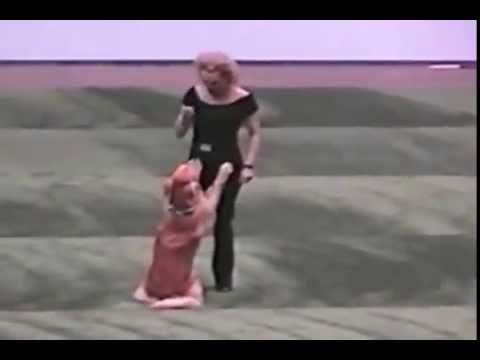 Dog & Owner Perform Grease routine.