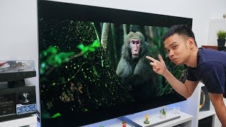 Video TV PALING GEDE YANG PERNAH SAYA COBA! MP3, 3GP, MP4, WEBM, AVI, FLV Mei 2019