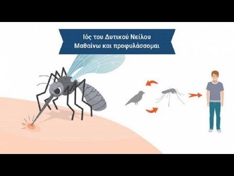 2 νεκροί – 25 κρούσματα από τον ιό του Δυτικού Νείλου