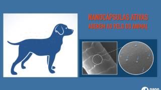 Conheça a tecnologia NanoScoping