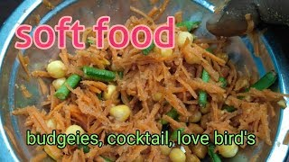 Budgeies, cocktail, love bird's ke lia soft food