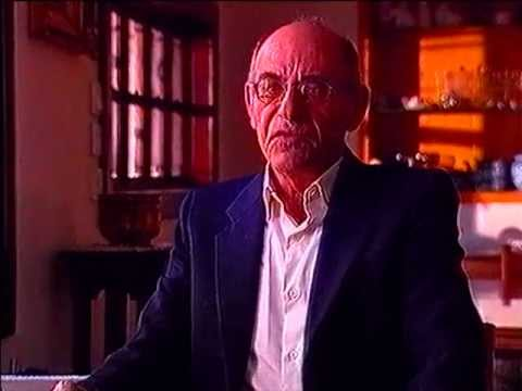 Holocaust Survivor Testimony: Daniel Avidar