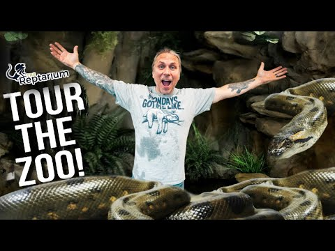 CAGE BY CAGE REPTILE ZOO TOUR!! | BRIAN BARCZYK