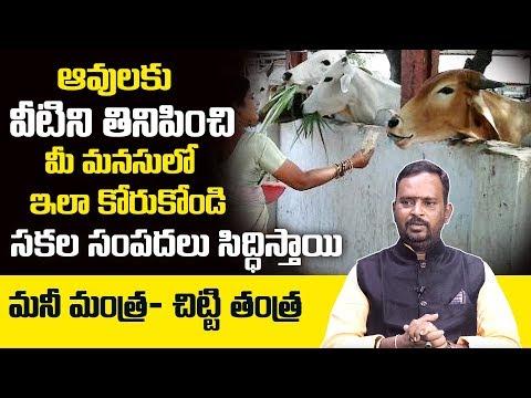 Chitti Tantra To Get Rich: Acharya Anantha Krishna Swamy about Milionaire Money Mantra