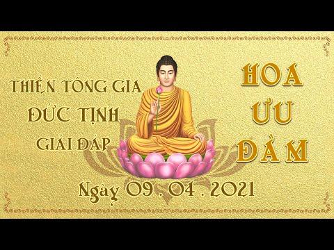 Thiền Tông Gia Đức Tịnh Giải Đáp - Ngày 09.04.2021
