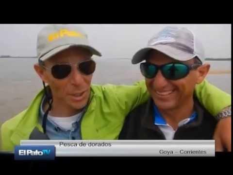 El Pato Televisión del 27 de agosto de 2016
