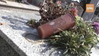 ospedaletto-profanate-le-tombe-al-cimitero