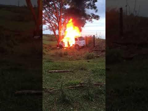 Palotina - Carro pega fogo após condutor perder controle e colidir em árvore.