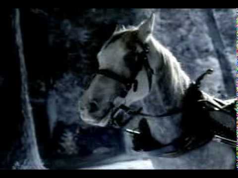 Funny Bud Light beer commercial – Farting horse (this is funny)