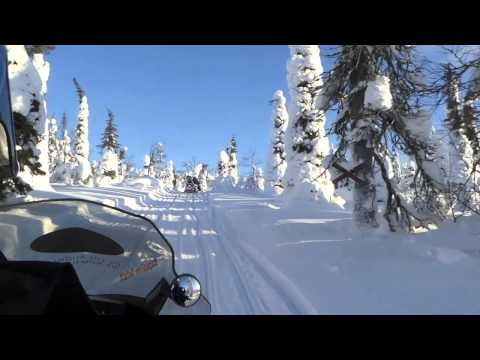 Snowscooter Safari Across Wonderful Winterwonderland - Lapland Finland