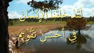 القرآن المعلم بصوت المنشاوي سورة  التين