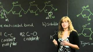 Covalent Bonds | MIT 7.01SC Fundamentals Of Biology