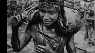 Nonton Το Αλάτι της Γης (The Salt of the Earth) 2014 Greek Sub Film Subtitle Indonesia Streaming Movie Download