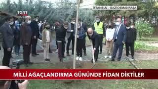 11.11 Milli Ağaçlandırma Günü - Tgrt Haber