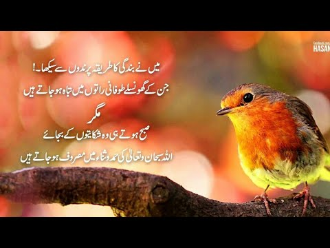 Romantic quotes - Best Urdu Qoute Life  Urdu Qoute  Beautifull Islamic Quotes Status   Inspiring Quotes