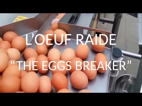 L'Oeuf Raide (Official) - The Eggs Breaker
