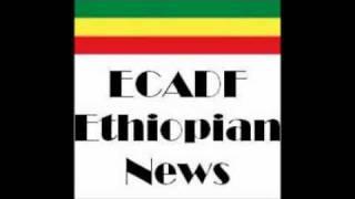 Ethiopia: Woyane Is Nervous And Acting Irrational  Part -2