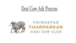 Desi Cow Ark Process