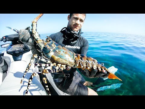 I QUIT MY FULL TIME JOB FOR YOUTUBE | Camping Catch And Cook Giant Crayfish Damper - Ep 67 - Thời lượng: 22 phút.