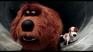 Video Max and Duke Sausage Party - The Secret Life Of Pets - Angel TV 🎥 MP3, 3GP, MP4, WEBM, AVI, FLV April 2019