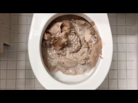 Will it Flush? - Chocolate Ice Cream