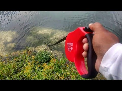 Retractable Dog Leash Catches FISH! DIY - Thời lượng: 8 phút, 31 giây.