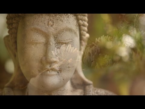 Mooji Guided Meditation: You Are Silence Itself
