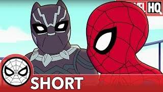 We Need Spidey & Black Panther Right MEOW! | Marvel Super Hero Adventures