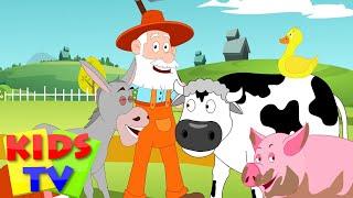 Old McDonald had a farm | Kids tv nursery rhymes | animal sound song