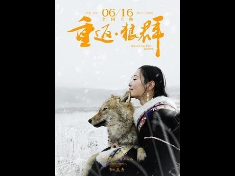 重返狼群-Return To The Wolves 2017 WEB DL 1080p H264 AAC Npuer