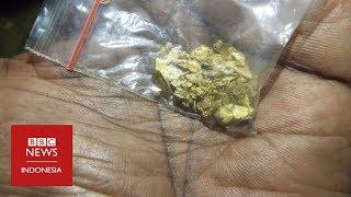 Video Mendulang emas di atas derita Suku Korowai di Papua MP3, 3GP, MP4, WEBM, AVI, FLV September 2018