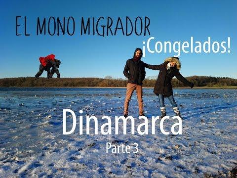 Dinamarca LUGARES TURISTICOS / PARAISO PLAYA CONGELADA! Dormir en SHELTERS! EL MONO MIGRADOR/
