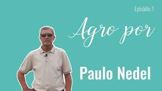 Agro por Paulo Nedel