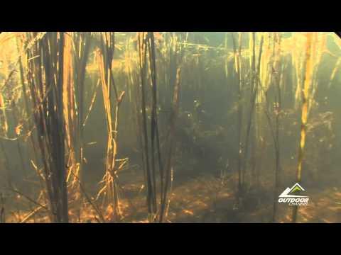 Wrestling in the Reeds - Hook n' Look Season 8 Episode 6Wrestling in the Reeds - Hook n' Look Season 8 Episode 6<media:title />