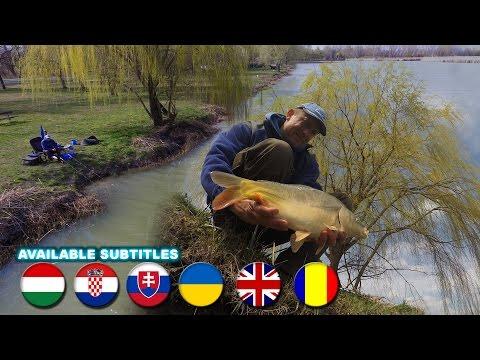 Döme Gábor - Felmelegedő vizeken - Tavaszi feederes praktikák egyesületi tavakon