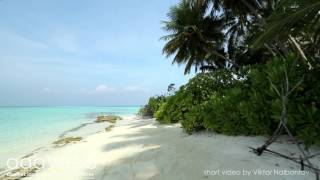 Video and sound from AaaVeee resort, Dhoores island, Maldives