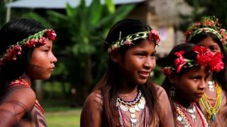 Video Trabajo de Turismo realizado en Pijibasal MP3, 3GP, MP4, WEBM, AVI, FLV Juli 2018