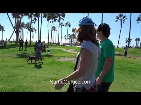 PIT BULL ATTACKS PUG DOG (FINGER IN REAR UNLOCKS JAW) VENICE BEACH CALIFORNIA OCT 1, 2016