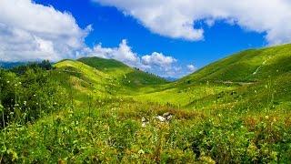 Природа Абхазии. 2015 (Abkhazian nature) ----------------------------------------------------------------------- Поделитесь видео с друзьями: https://www.youtu...