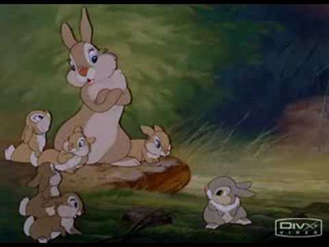 thumper - Don't say anything at all!