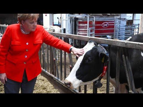 Merkel verspricht bessere Bedingungen für Bauern