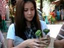 LTARN มีแฟนทำดอกกุหลาบใบเตยมาให้ตอนไปร่วมงานจุลกฐิน ที่เชียงใหม่.